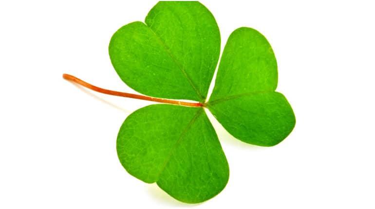 You are currently viewing Liste de prénoms irlandais